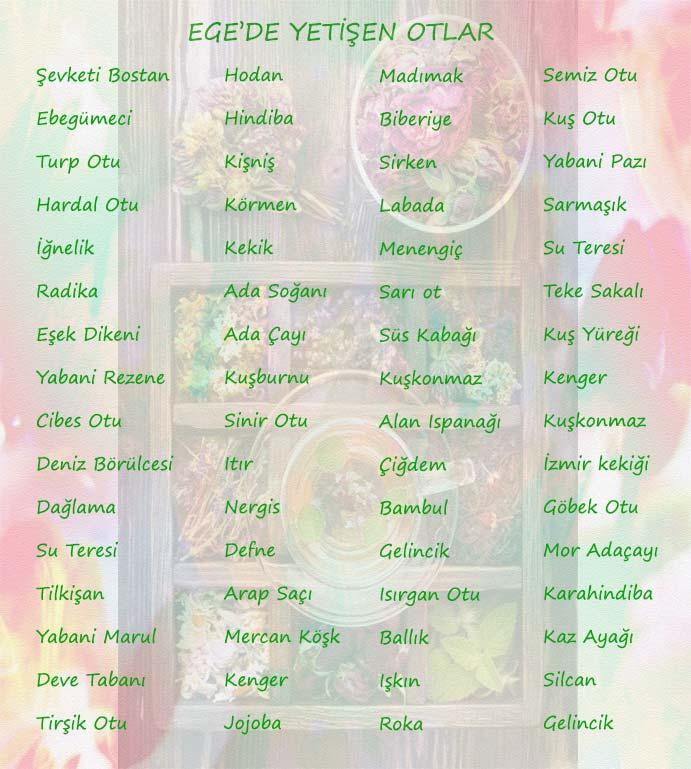 Ege Bölgesine ait şifalı otlar liste olarak verilmiş.