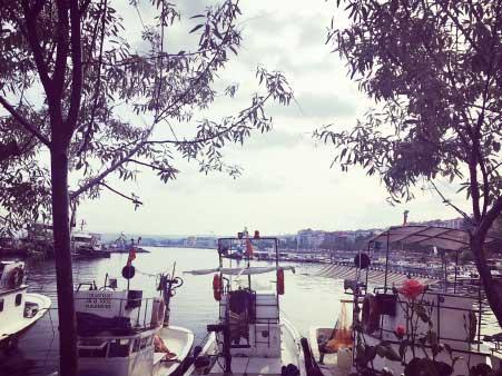 Marmara Bölgesinin Yemek Kültürü - Trakya'dan İğneada şehrinin görseli.