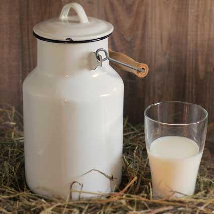 Tok tutan yiyecekler içerisinde yer alan bir bardak süt görseli.