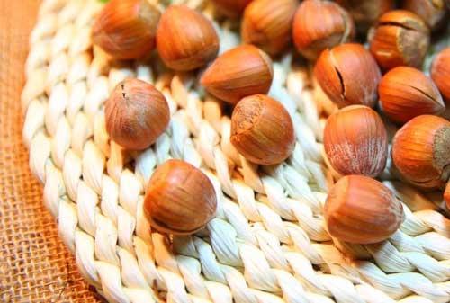 Karadeniz Bölgesi Yemek Kültürü içerisinde yer alan, Ordu'da yetişen ait fındık görseli.